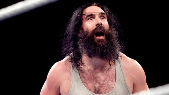 Luke Harper Cleared To Return To The Ring